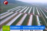农业发展新动向经济合作助推农牧区产业融合