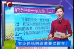 解读中央一号文件(二)农业供给侧改革要义何在?