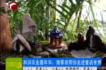 和润农业嘉年华:微景观带你走进童话世界
