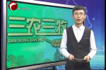 敖汉旗温氏集团扎寨营子合作家庭农场投入运营
