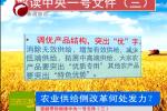 解读中央一号文件(三)农业供给侧改革何处发力?