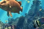 科普:奇形怪状的海底猎手