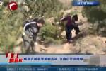喀旗开展春季植树活动 为南山公园增绿