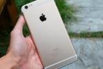 网拍天价苹果7手机 两名恶作剧者受处罚