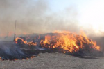 秋冬季节天气干燥 大量草料堆发生火灾
