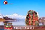 西藏部分景区免费对游客开放