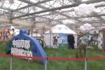 第六届北京农业嘉年华开幕阿旗主打绿色纯净牌