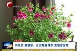 《最美家庭》 刘凤武 赵慧珍:让沙地穿绿衣 荒地变宝地