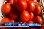 赤峰这三样吃的获2018年首批国家地理标志认证
