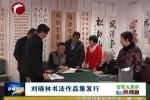 刘晓林书法作品集发行