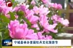 宁城县举办首届牡丹文化旅游节