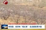 """林西县:经济林""""唱主角""""生态建设再升级"""