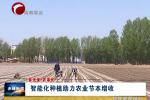 《春光美 农事忙》专栏:  智能化种植助力农业节本增收
