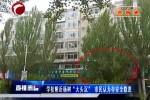 """学校附近杨树""""大头沉"""" 市民认为存在安全隐患"""