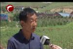 新型职业农民为乡村发展添活力