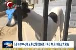 《赤峰市中心城区养犬管理办法》将于10月18日正式实施