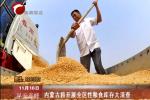 内蒙古将开展全区性粮食库存大清查
