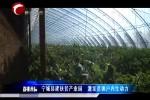 宁城县建扶贫产业园 激发贫困户内生动力