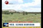 《牢记习近平总书记嘱托 生态优先 绿色发展》 林西县:生态林建设 绘就绿色新画卷