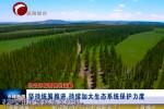 《生态环保督察在赤峰》  坚持统筹推进 持续加大生态系统保护力度