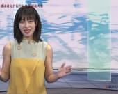趙州橋--張宏