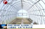 116微波站:心系廣電 高山為家