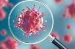 好消息!中科院武汉病毒所筛出能较好抑制新型冠状病毒药物