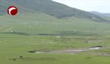 新闻链接:阿鲁科尔沁旗率先启动农牧交错带牧区现代化试点工作