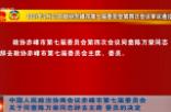 中国人民政治协商会议赤峰市第七届委员会关于同意陈万荣同志辞去主席、委员的决定