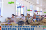 《内蒙古自治区促进民族团结进步条例》系列解读(四) 促进各族群众就业 提高农牧民就业技能