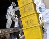 """战""""疫""""期间 我市的医疗废物都去哪了?"""