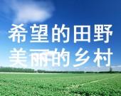 """【希望的田野 美丽的乡村】河套平原掀起农产品""""私人订制""""潮"""
