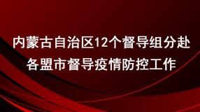 内蒙古自治区12个督导组分赴各盟市督导疫情防控工作
