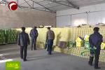 巴林右旗750户农民喜获新订单
