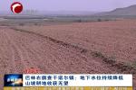 右旗:地下水位持续降低 山坡耕地收获无望