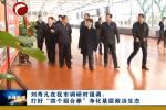 """刘奇凡在我市调研时强调:打好""""四个组合拳""""净化基层政治生态"""