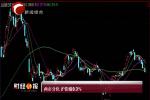 10月8日两市分化沪指涨0.3%
