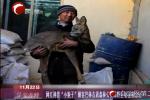 """网红神兽""""小狍子""""做客巴林右旗森林公安局野生动物救助站"""