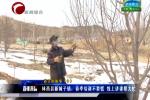 【林西县】新城子镇:春季培训不要慌线上讲课帮大忙