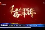 致敬建党100周年 红色百宝 奋斗百年(三十)将军手枪忆忠魂