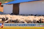 巴林右旗农牧业产业化经营水平持续提升